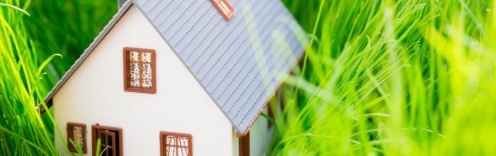 6 Spring Maintenance Tips for Homeowners